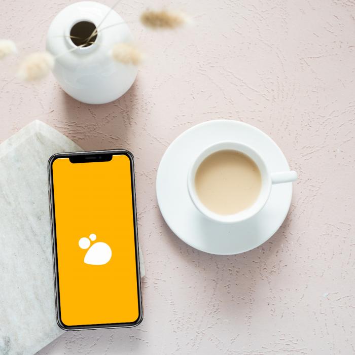 Hive DIE neue Social Media App